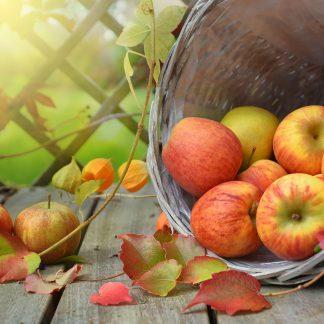 Sezonsko sadje